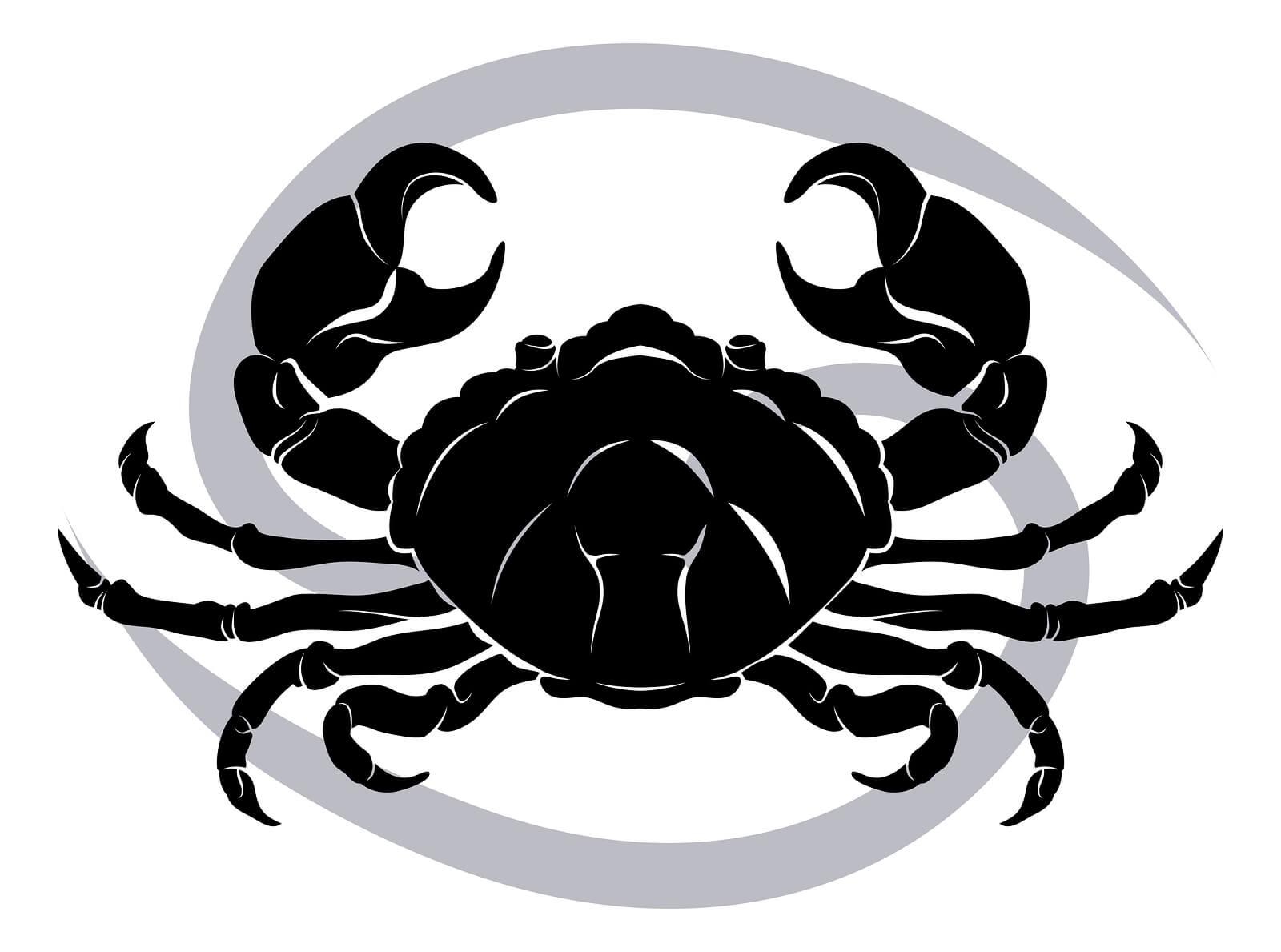 Zodiac Related Stuff | 180degreez com